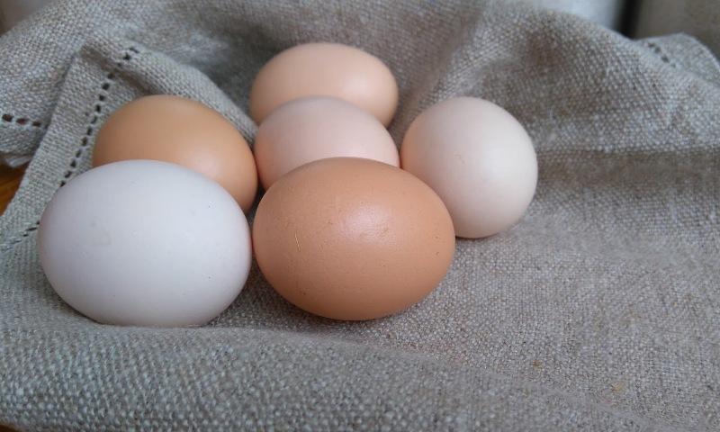 Kananmunat Hinta