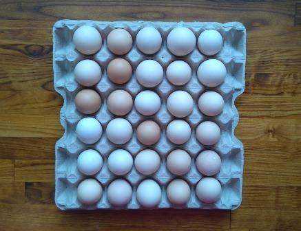 Kananmunia Suoraan Tuottajalta
